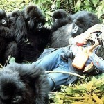 The extraordinary Dian Fossey