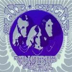 Paul, Dickie & Leigh: Sonic Revolution